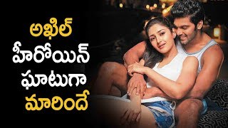 Sayesha Saigal in Gajinikanth Movie | Latest Telugu Movie News