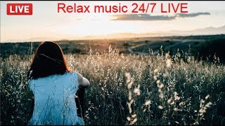 lofi hip hop radio | erotic beats to relax/study to meditation | Mindfulness | chilledcow live 24/7