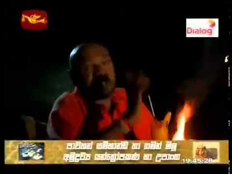 WWW PIVITHURU NET  TELE DRAMA SINHALA ENGLISH HINDI TAMIL MOVIES NEWS LIVE TV LIVE CRICKET  MP3  VIDEO SONG FUNNY VIDEO