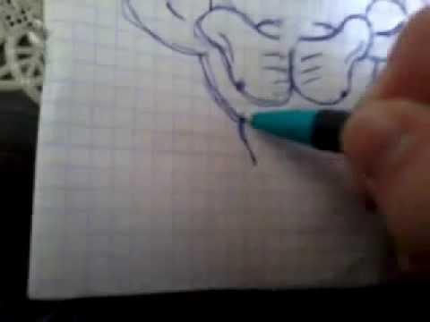 Видео как нарисовать качка карандашом