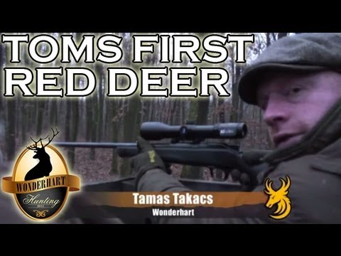 Hunting Red Deer in Hungary
