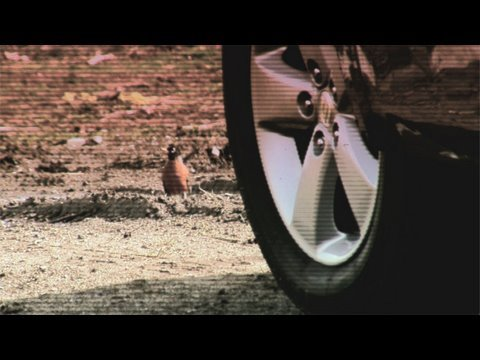 Driving Sports TV - 2009 Suzuki Grand Vitara: The Offroad Adventure (1/2)