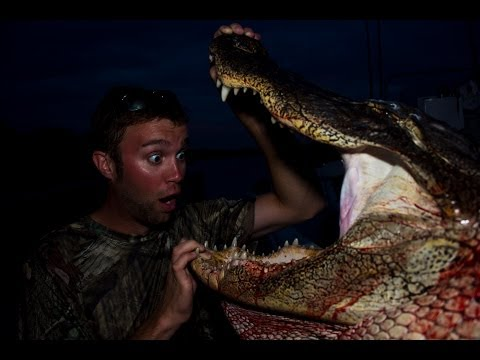 Alligator Hunt = Coconut Crusted Gator Bites video
