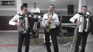 Orkestar Marka Ristivojevica (Vlada) - Volela si karanfile bele (Live) Izlet,Topola 2016