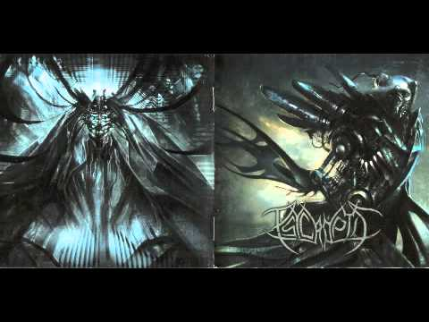 Psycroptic - Our Evolutionary Architecture