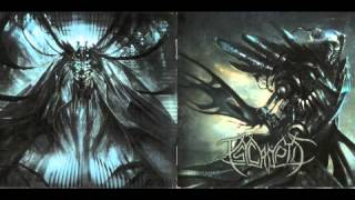 Watch Psycroptic Our Evolutionary Architecture video