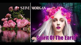 Stive Morgan - Spirit Of The Earth ( 4K)