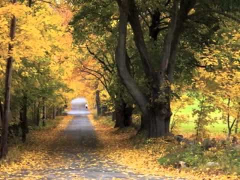 Cheryl Wheeler - When Fall Comes to New England