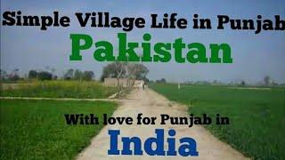 Simple Village Life in Punjab, Pakistan