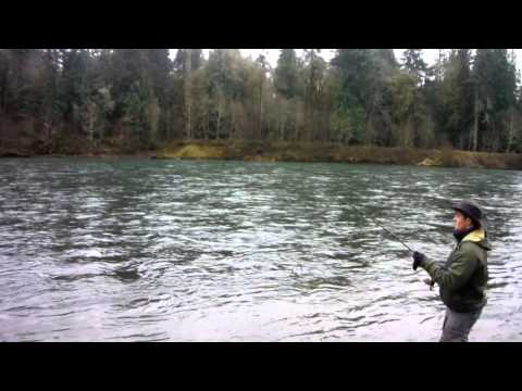 Hatchery Steelhead Fishing in Southwest Washington