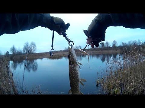 где озеро на рыбалку щука