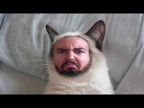 Sexy Katzenliebe!!! video