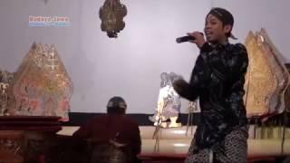 download lagu Kangen Suarane ~ Percil gratis