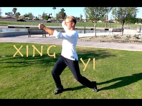 Incredible Kung Fu KATA - So Badass - Xing Yi Quan - Hsing I Chuan Image 1