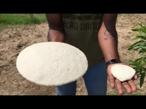 Giant idli -   Cooking the Biggest idli in the World - My Money My Food