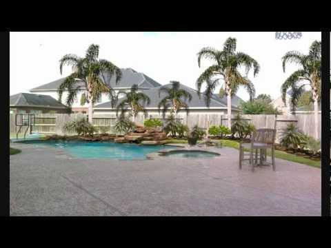 Palm Trees For Houston Swimming Pools Landscaping Youtube