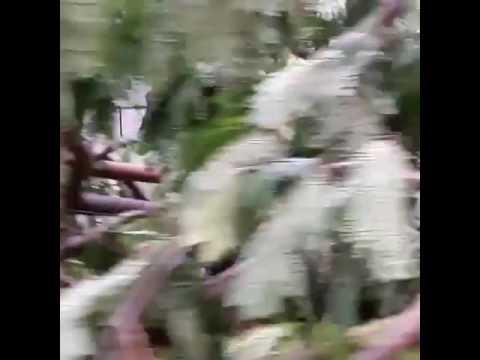 After massive storm hit Hyderabad