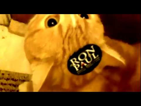 cats for ron paul