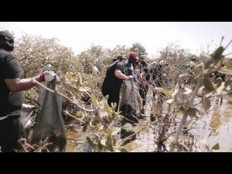 Clean Up Qatar - The Mangrove Clean Up - Alex Klim