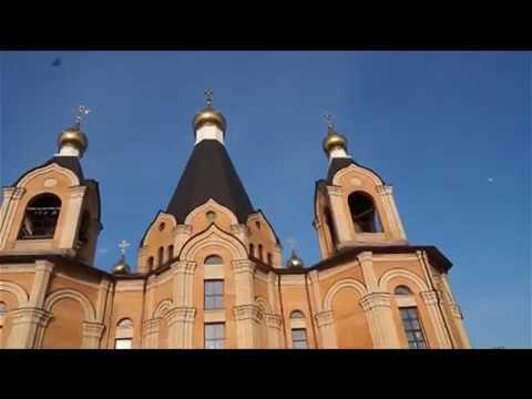 Десна-ТВ: День за днём от 07.04.2017