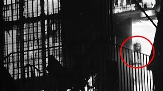 5 Mysterious Photos That Solved Forgotten Mysteries!