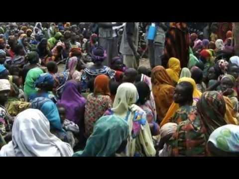 Boko Haram Crisis Nigerian Troops 'Flee Into Cameroon'