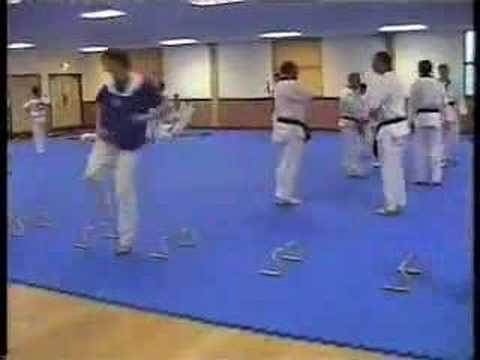 SAQ® Combat - TAE KWON DO training Image 1