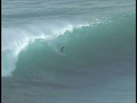 Surfers Ride Over Great White Shark
