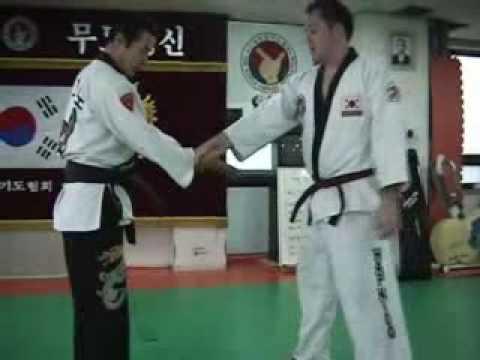 Hapkido Techniques