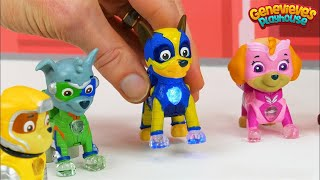Paw Patrol Mighty Pups vs Romeo Wrong Color Video for Kids!