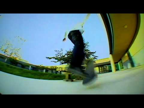 Mike Taylor - In Bloom - HD