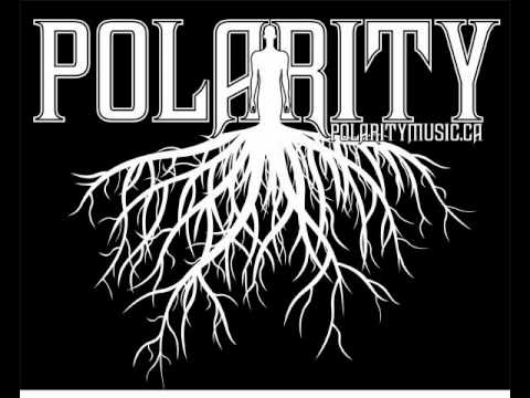 Polarity - Digital Recluse