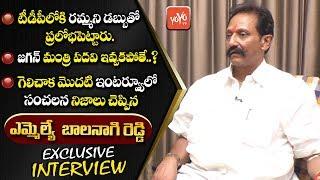 YSRCP Mantralayam MLA Balanagi Reddy Exclusive Interview After AP Election Results   YOYO TV