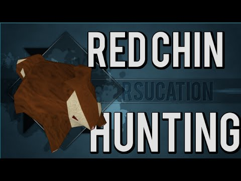 RSucation – Complete Red Chinchompa Hunting Guide (63-99 Hunter Guide Old School Runescape)