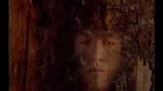 Танцы минус - Дерево