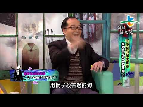 台綜-來自星星的事-20190319-詭話醫生說:【毛小孩的鬧鬼實錄,寵物見鬼視角超展開!!】