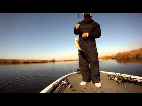 Bass Fishing on the California Delta, January 5, 2014