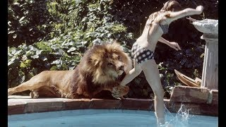 6 Cases Of Animals That Took Revenge