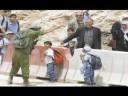 The Free Gaza Movement
