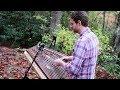 Autumn Rain - Solo Hammered Dulcimer - Joshua Messick