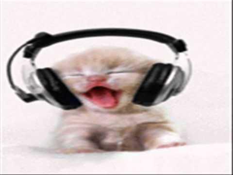 Dugem - Kokok Ayam - By' Cat' Funk Versiaon - Remix House Musi video