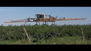 Hagie Super High Clearance Sprayer in Blueberries