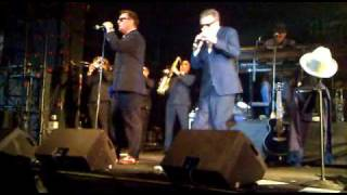 Madness - NW5 (I Would Give You Everything) Live @ Moscow, Russia 28.04.2010)
