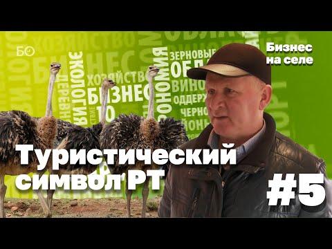 Бизнес на селе #5. Страус как новый туристический символ Татарстана