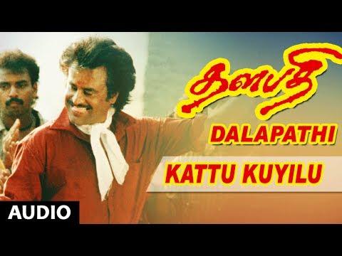 Thalapathi Movie Songs   Kattu Kuyilu Song   Rajanikanth,Mammootty, Shobana   Ilayaraja   Maniratnam