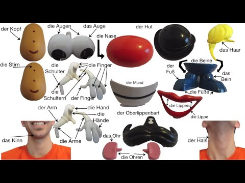 German Body Parts w/ Mr. Potato Head (Deutsche Körperteile mit Herrn Kartoffelkopf)