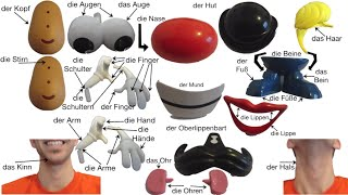 German Body Parts featuring Mr. Potato Head (Deutsche Körperteile mit Herrn Kartoffelkopf)