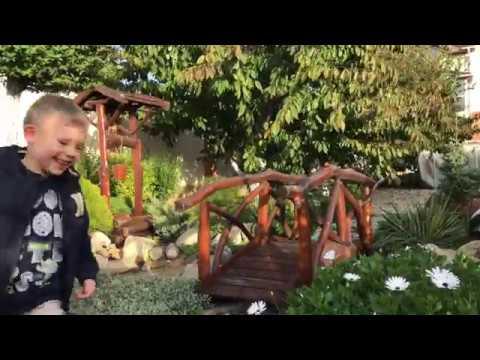 Малоуходный сад: Лайфхаки по созданию
