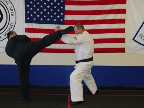 Jeet Kune Do STOP KICK! Image 1
