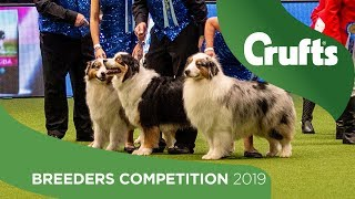 Breeders Competition Final | Crufts 2019